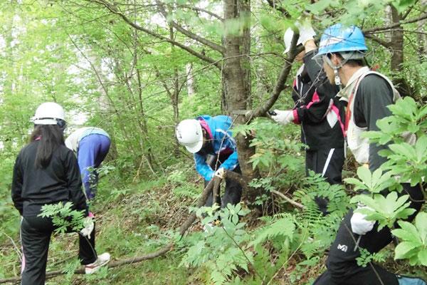 森林環境プログラム01