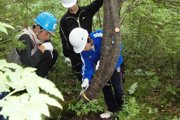 森林環境プログラム02