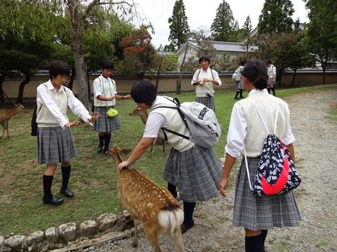関西修学旅行(中学校2年生)3泊4日
